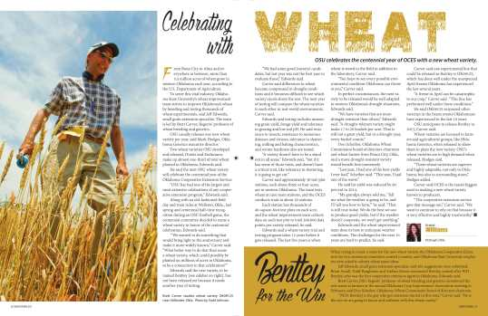 Williams_wheatstory-1